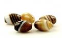 """Бусина гладкая форма """"бочонок"""", камень-агат натуральный,гладкий,"""